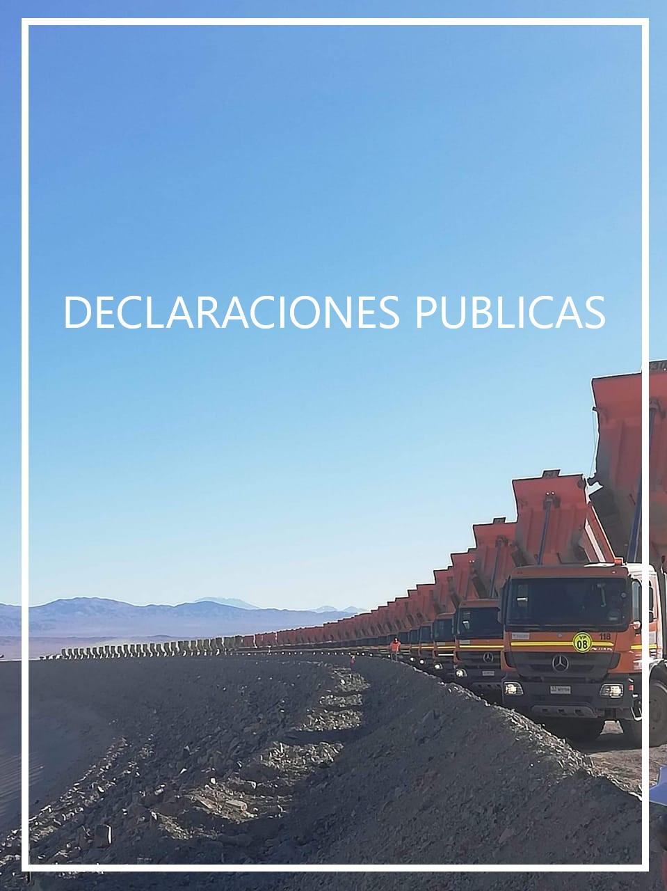 Declaración Pública